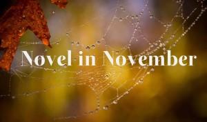 novel-in-november